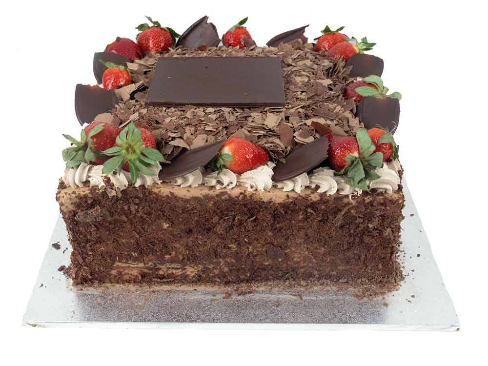 13in_black_forest_1